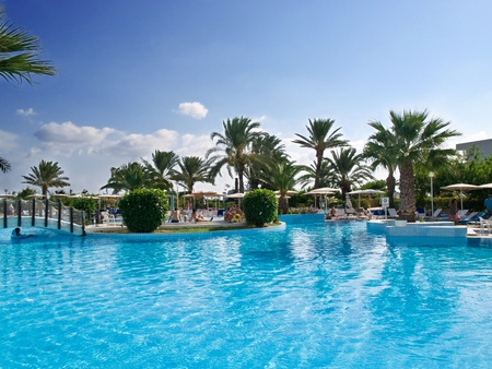 Relaxing swimming pool rounded by palm trees photo