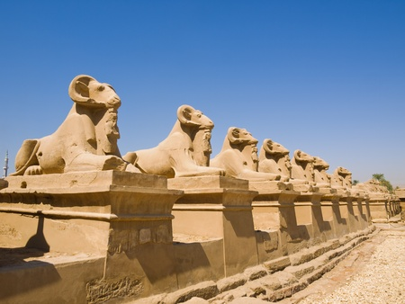 Avenue of Ram-headed Sphinxes at Karnak Temple  Egypt