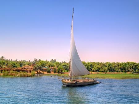 nile river: Faluca sailing  Images from Nile, Egypt