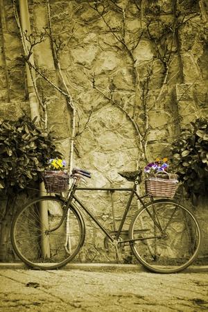 花の束を持つヴィンテージ自転車 写真素材