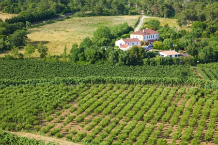 Countryside scenery with agricultural fields and a farm in Estremadura, Portugal Stock Photo