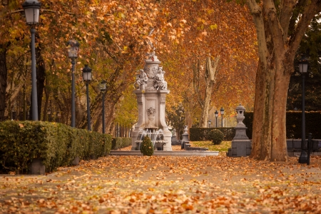 strret: Romantic landscape of Madrid downtown at early winter