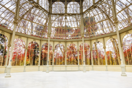 Winter in the Retiro park seen from inside the Palacio de Cristal of Madrid, Spain