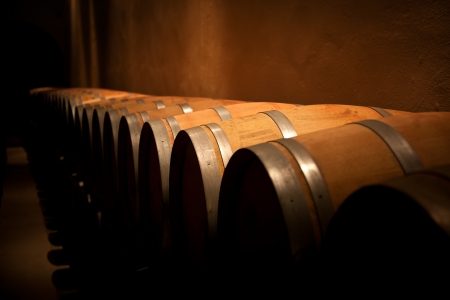 Row of wine barrels in an aging cellar Stock Photo