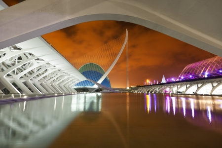 Valencia, Spain - August 25, 2011  City of Arts and Sciences by Santiago Calatrava  The Sciences museum and L Stock Photo - 22792855