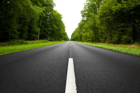 roadway: Black roadway through the forest Stock Photo