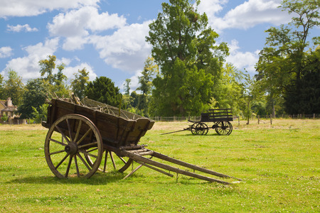 horse cart: Old wooden wagons in the meadows