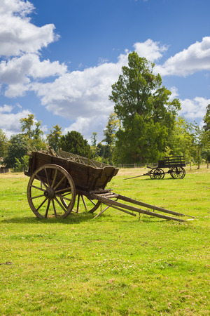 wagons: Old wooden wagons in the meadows