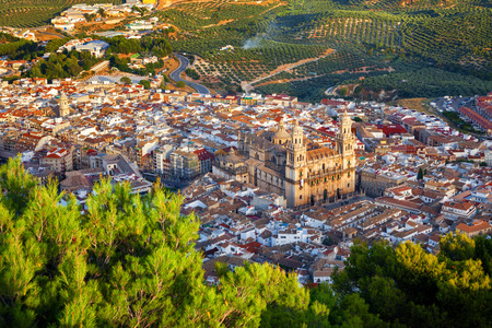 bird view: Bird view of Jaen city surrounded by olive groves, Andalusia, Spain. Assumption of the Virgin Cathedral is highlighted by the last rays of sunset