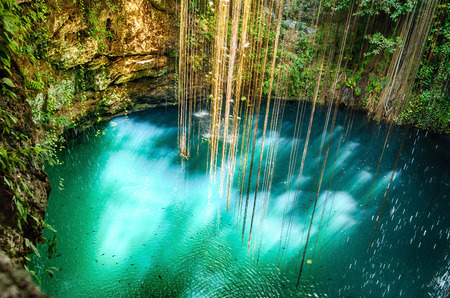 tropical paradise: Ik-Kil Cenote near Chichen Itza, Mexico. Lovely cenote with transparent waters and hanging roots