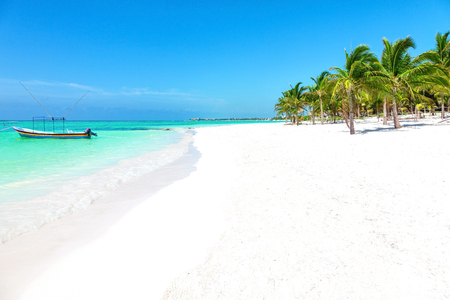 riviera maya: Stunning tropical beach with coconut palm and turquoise waters