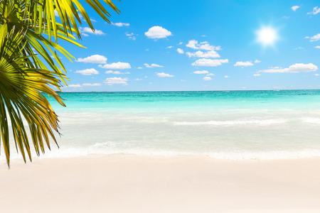 透明な水と素晴らしいカリブ海のビーチ 写真素材