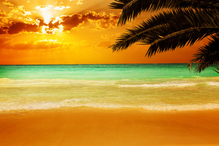 caribbean beach: Sunset on a stunning Caribbean beach with transparent water Stock Photo