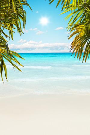 playa del Caribe impresionante con agua transparente