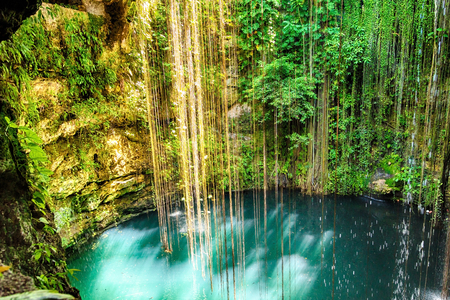 misterious: Ik-Kil Cenote near Chichen Itza, Mexico. Lovely cenote with transparent waters and hanging roots