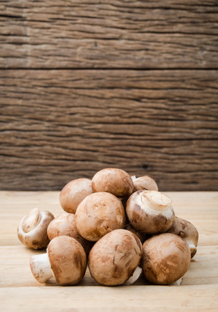button mushroom: Champignon mushroom set up with brown background. Champignon mushroom or Button mushroom they are available year-round. Can be made a soups, salads or eaten raw. Stock Photo