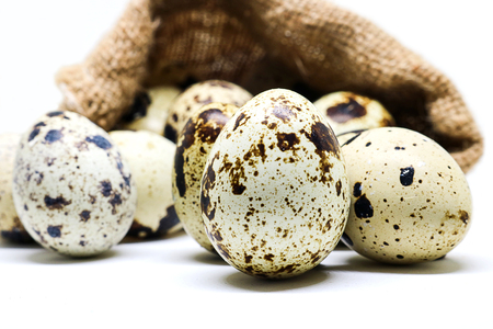 Quail eggs in hemp sack on white background.  Quail eggs has high level of vitamin A and B2