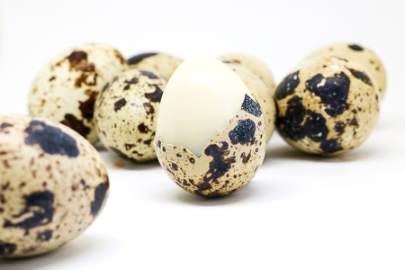 albumen: Quail eggs isolated on white background.  Quail eggs has high level of vitamin A and B2
