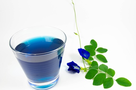 Asian pigeonwings and blue juice isolated on white background photo