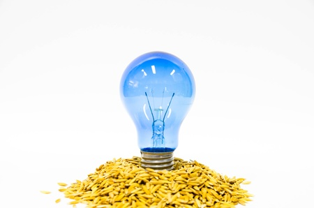 husk: light bulb energy from rice husk Stock Photo