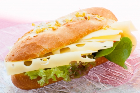 sandwish: sandwich with cheese and vegetable