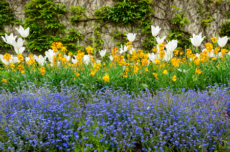 Beautiful Flowers In Parade Gardens Public Park, Heart Of Bath, England