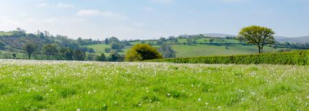 Dartmoor National Park, Area of Moorland In Southern Devon, England, In Spring Season Stock Photo