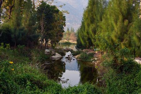 Natural Landscape Of Lake And Tree In Kaoyai Nakorn Ratchasrima, Thailand