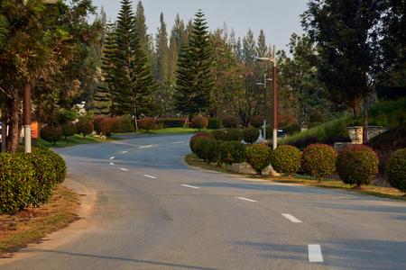 Curved Asphalt Road In Park, Monrnig Sunshine Stock Photo