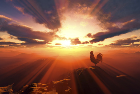 rooster at dawn: 3D illustration of sunrise and a chicken