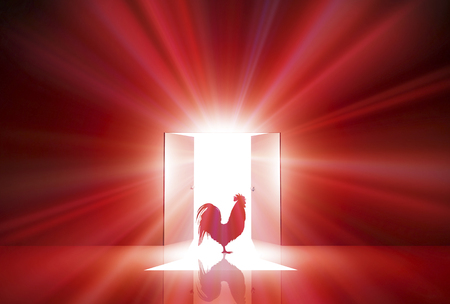 Door light shines through and chicken