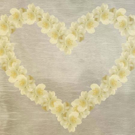 jasmine heart photo
