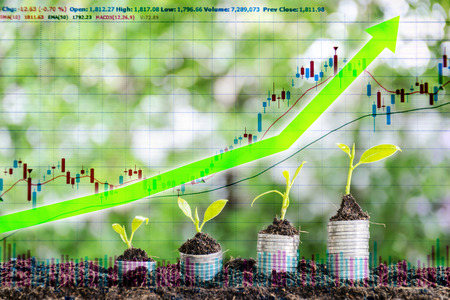 Investment in the stock market, The arrow shot up. Financial growth, stacking coins, stacking four stacks, and planting trees on it, ascending order, bokeh backdrops.