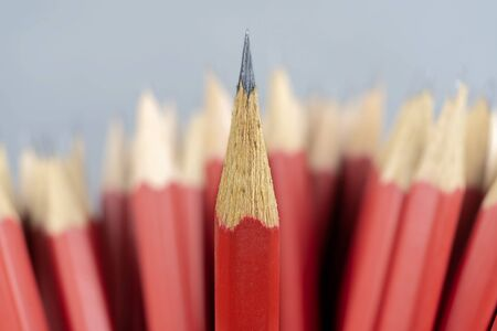 Leadership successful team leader (manager, CEO, market leader) and another business leading concepts. Standing out from the crowd. Red pencil that represents leadership. Reklamní fotografie