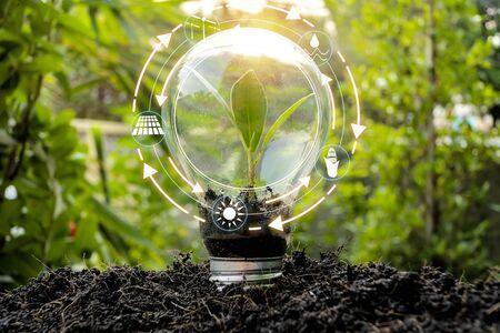 Gli alberi che crescono in bulbi di fronte al mondo mostrano il consumo del mondo con le icone delle fonti energetiche per uno sviluppo rinnovabile e sostenibile. Concetto di ecologia.
