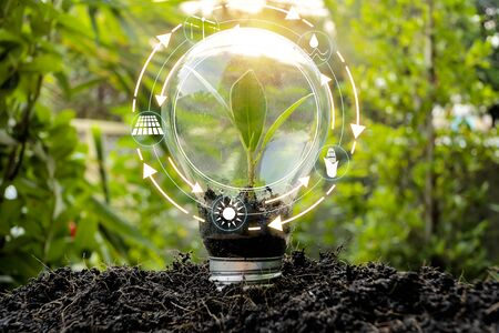 Les arbres qui poussent dans des bulbes devant le monde montrent la consommation mondiale avec des icônes de sources d'énergie pour un développement durable et renouvelable. Notion d'écologie.