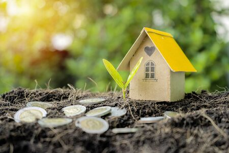 Investment in real estate, land, housing. Investment trends are growing in a good direction. The address is very necessary. House models, coins, trees growing on the soil pile Stok Fotoğraf