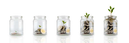 Glass jars with coins and plant isolated on white, savings concept