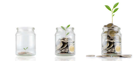 Jars with different levels of coins, with a seedling growing separately on white, coins in the glass, financial accounting ideas