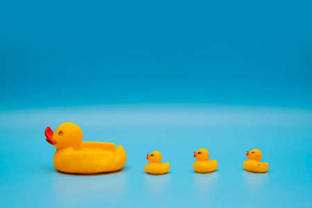 The concept of a smooth follow-up, rubber ducks manage to line up on a blue background 版權商用圖片