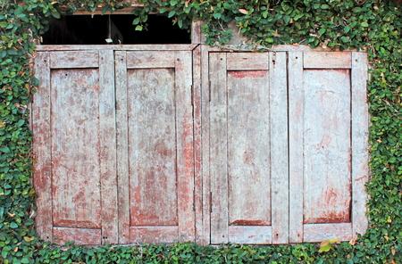 vibrant cottage: old window
