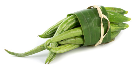 Snake gourd photo