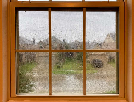 A raining day view look from a indoor window