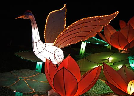 lotus lantern: Night landscape