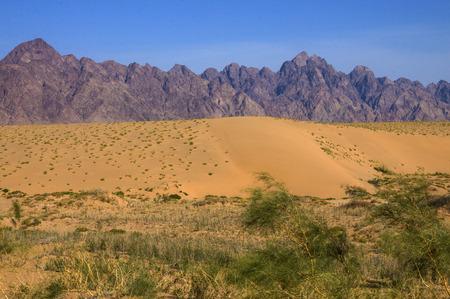 dunes: The sand dunes