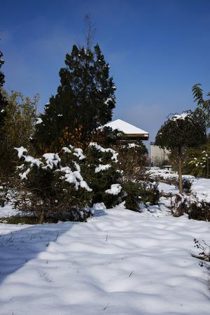city park pavilion: Snow scene