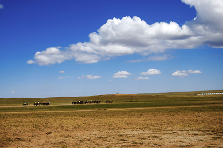 prairie: Prairie with horse riding Stock Photo