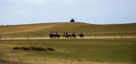 prairie: Prairie with horse riding Editorial
