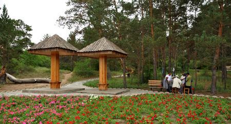 pinus sylvestris: Public gardens Editorial