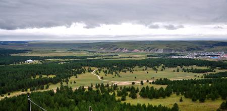 pinus sylvestris: Landscape Stock Photo